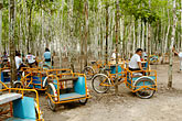 pyramid stock photography | Mexico, Yucatan, Coba, Bicycles for rent, image id 4-850-2850