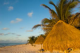 thatch stock photography | Mexico, Riviera Maya, Tulum, Beach palapas, image id 4-850-2902