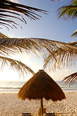 thatch stock photography | Mexico, Riviera Maya, Tulum, Palapa on the beach, image id 4-850-2945