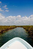 marshland stock photography | Mexico, Yucatan, Sian Ka