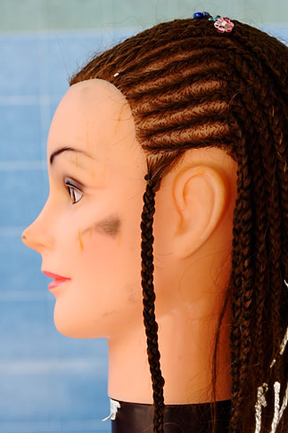 image 4-850-3276 Still Life, Braids on mannequin