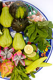plate stock photography | Mexican Food, Typical ingredients for Mayan Cuisine, Chaya leaves, achiote, epazote, image id 4-850-5054