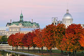twilight stock photography | Canada, Montreal, Bonsecours Park and Hotel de Ville with fall foliage, image id 6-460-2171