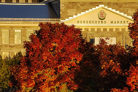 image 6-460-7859 Canada, Montreal, Bonsecours Market with fall foliage