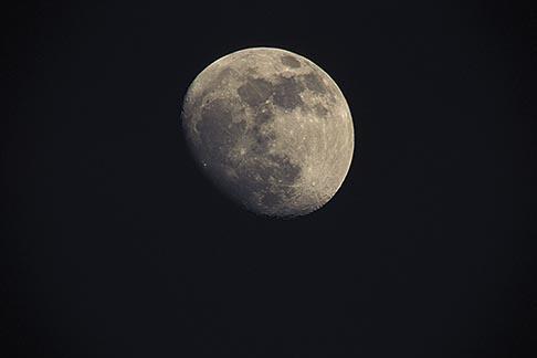 image 1-94-7 Moon, Nearly full moon, closeup
