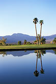 reflection stock photography | Nevada, Mesquite, Palms Golf Course, image id 3-850-10