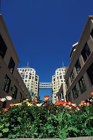 image 1-99-7 California, Oakland, City Center Plaza
