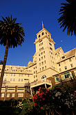 palm tree stock photography | California, Berkeley, Claremont Resort and Spa, image id 4-729-10