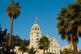 palm tree stock photography | California, Berkeley, Claremont Resort and Spa, image id 4-739-15