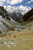 snow capped stock photography | Pakistan, Karakoram Highway, Yaks and KKH below the Khunjerab Pass, image id 4-443-34