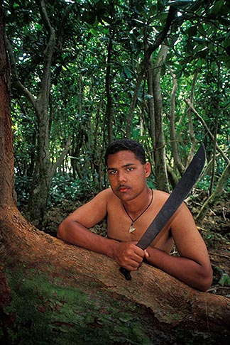image 8-127-23 Palau, Angaur, Man in rainforest with machete
