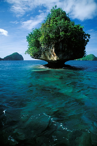 image 8-87-15 Palau, Rock Islands, Forested island