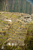 inca agricultural terraces stock photography | Peru, Machu Picchu, Inca agricultural terraces, image id 8-760-1493