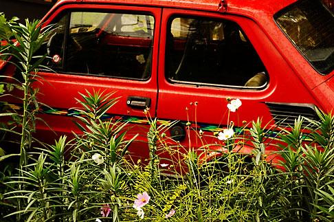 image 4-960-1236 Poland, Jelenia Gora, Red car abandoned in garden