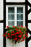 red flower stock photography | Poland, Jelenia Gora, Window and flowerbox, image id 4-960-1242