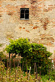 jelenia gora stock photography | Poland, Jelenia Gora, Garden and wall, image id 4-960-1258