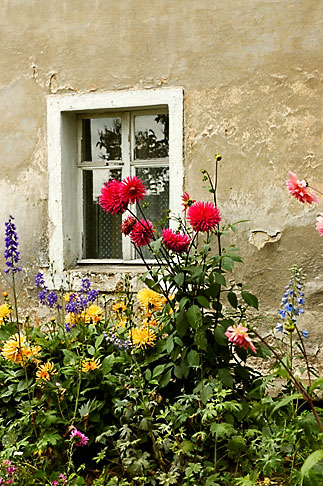 image 4-960-1287 Poland, Jelenia Gora, Garden and window