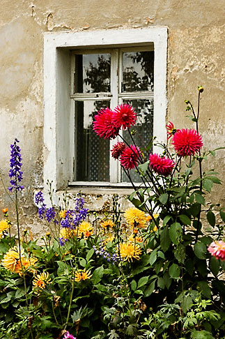 image 4-960-1290 Poland, Jelenia Gora, Garden and window