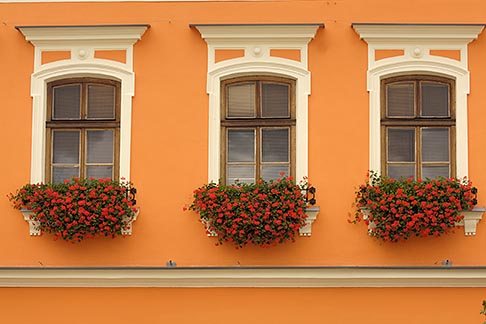 image 7-720-8121 Poland, Tarnow, Windows with flowerboxes, Rynek, Town Square