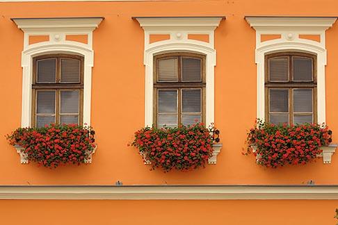 image 7-720-8121 Poland, Tarnow, Windows with flowerboxes, Rynek, Town Square
