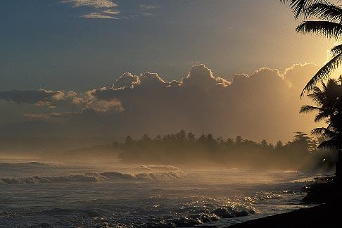 image 1-353-90 Travel Caribbean Beach landscape, Puerto Rico, Isabela, Morning light on beach, exotic palms