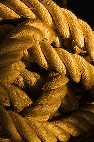 image 5-750-9979 Still life, Tangled rope
