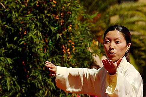 image 5-620-2994 California, San Francisco, Chinese Martial Artist