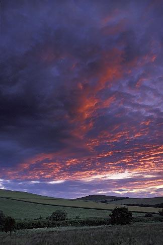 image 1-537-7 Scotland, Aberdeenshire, Evening light on fields