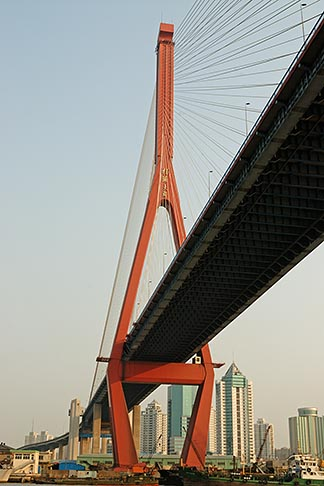 image 7-620-4130 China, Shanghai, Yangpu Bridge, cable stayed bridge across the Huangpu River