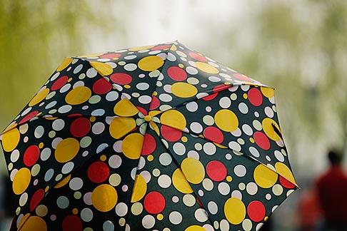image 7-620-4430 China, Hangzhou, Polka dotted umbrella