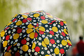 polka dotted umbrella stock photography | China, Hangzhou, Polka-dotted umbrella, image id 7-620-4430