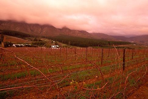 image 1-415-68 South Africa, Franschhoek, Vineyards, Franschhoek Valley