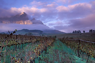 1-415-77  stock photo of South Africa, Franschhoek, Sunrise on Groot Drakensteinberg