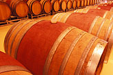 row stock photography | South Africa, Helderberg, Barrel cellar, Morgenster Wine Estate, image id 1-420-17