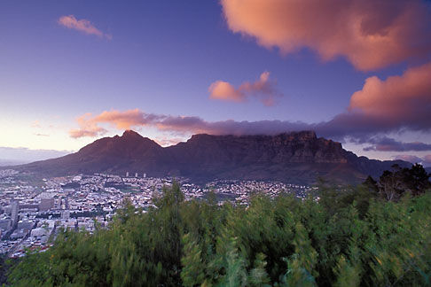 5-469-13  stock photo of South Africa, Cape Town, Table Mountain and city at dawn from Lions Head