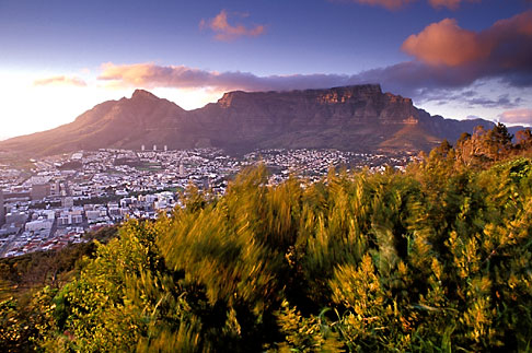 5-469-2  stock photo of South Africa, Cape Town, Table Mountain and city at dawn from Lions Head