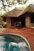 porch stock photography | South Africa, Transvaal, Pool, Tree Camp, Londolozi Reserve, image id 7-426-20