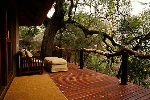 image 7-426-28 South Africa, Transvaal, Tree Camp, Londolozi Reserve