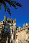 palm trees stock photography | Spain, Seville, Sevilla Cathedral, image id 1-252-55