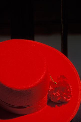 image 1-254-20 Spain, Seville, Red hat