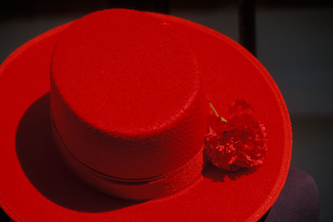 image 1-254-21 Still life, Red hat