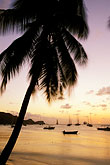 palm tree stock photography | St. Vincent, Bequia, Sunset, Admiralty Bay, image id 3-610-54