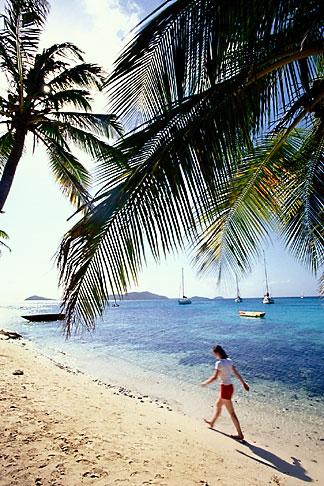 image 3-610-65 St Vincent, Tobago Cays, Horseshoe Reef, Petit Bateau island