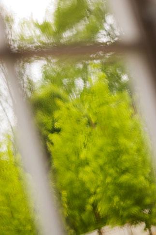 image 5-700-5848 Sweden, Goteborg, Rainy window
