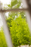 out of focus stock photography | Sweden, G�teborg, Rainy window, image id 5-700-5848