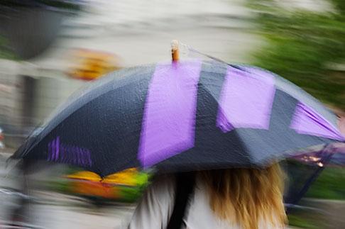 image 5-720-7107 Sweden, Stockholm, Umbrella in rain
