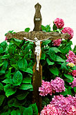plants in garden stock photography | Switzerland, Valais, Cross in churchyard, Ernen, image id 2-94-2