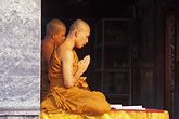 sacred stock photography | Thailand, Chiang Mai, Monks praying, Wat Phra That Doi Suthep, image id 0-361-13