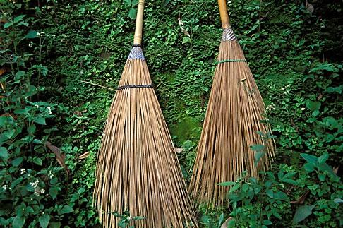 image 0-361-41 Still life, Brooms