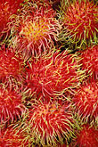 macro stock photography | Food, Rambutan in market, image id 7-285-4